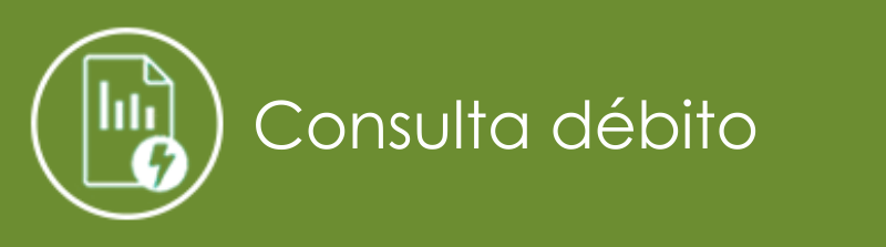 Consulta Débito Celpe - Conta Atrasada